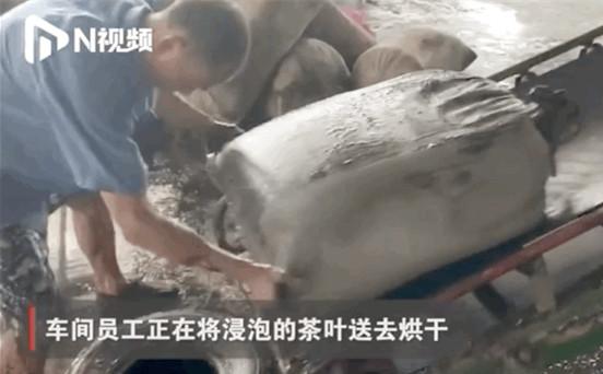 3000吨茶叶被泡,茶企负责人失声痛哭!